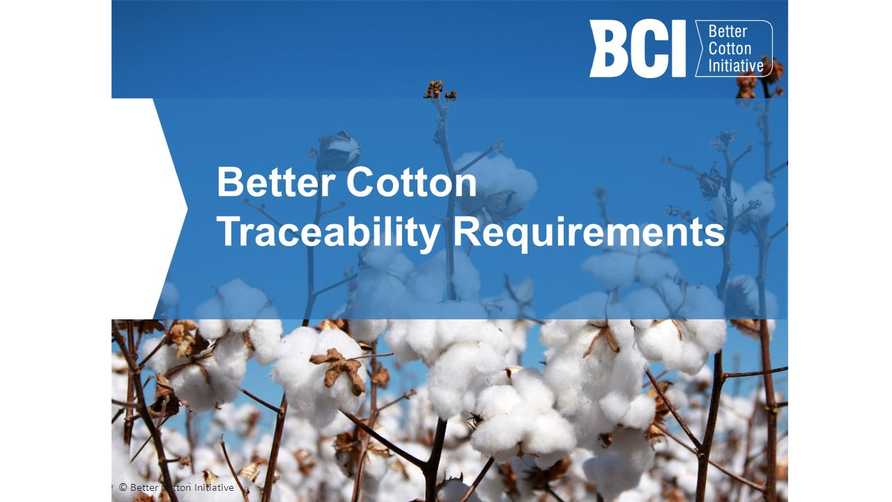 YarncIty® is sourcIng BCI CertIfifed Cotton FIbres
